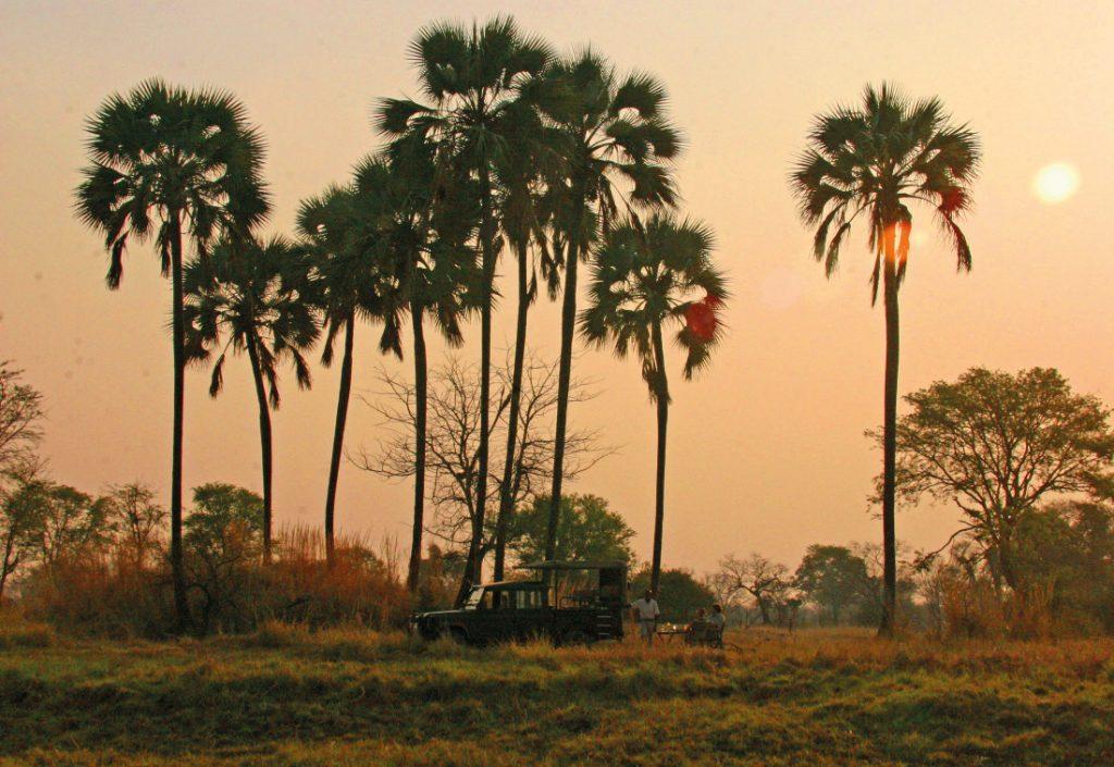 Sambia Kafue NP Nanzhila Plains Camp Pirschfahrt Iwanowskis Reisen - afrika.de