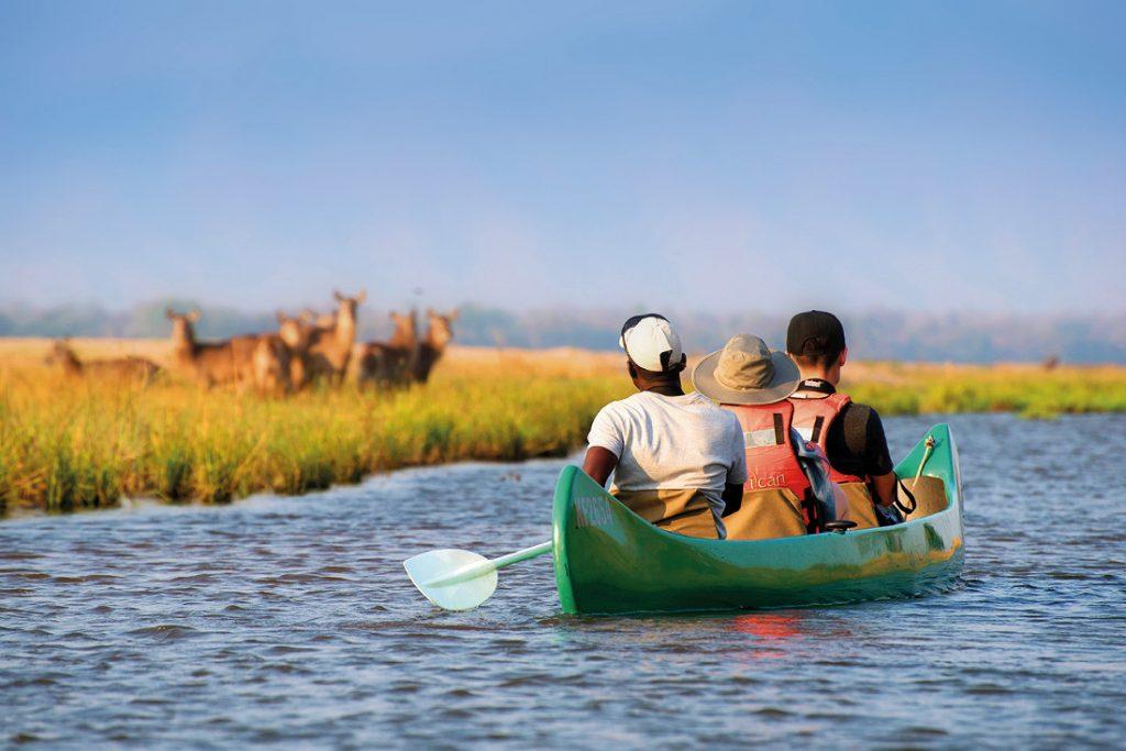 Simbabwe Mana Pools NP Zambezi Expedions Camp Kanufahrt Iwanowskis Reisen - afrika.de