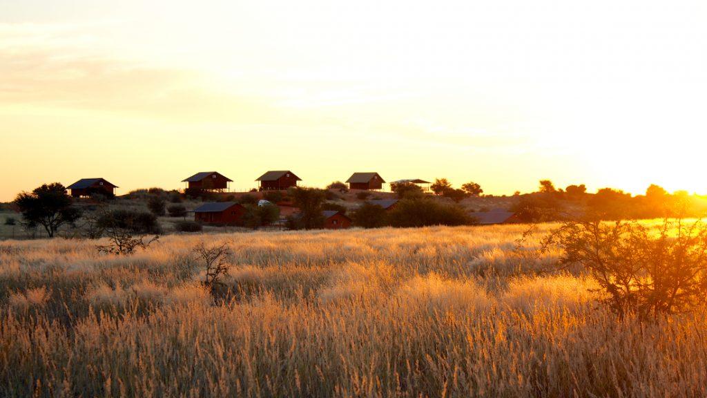 Namibia Kalahari Bagatelle Game Ranch Iwanowskis Reisen - afrika.de