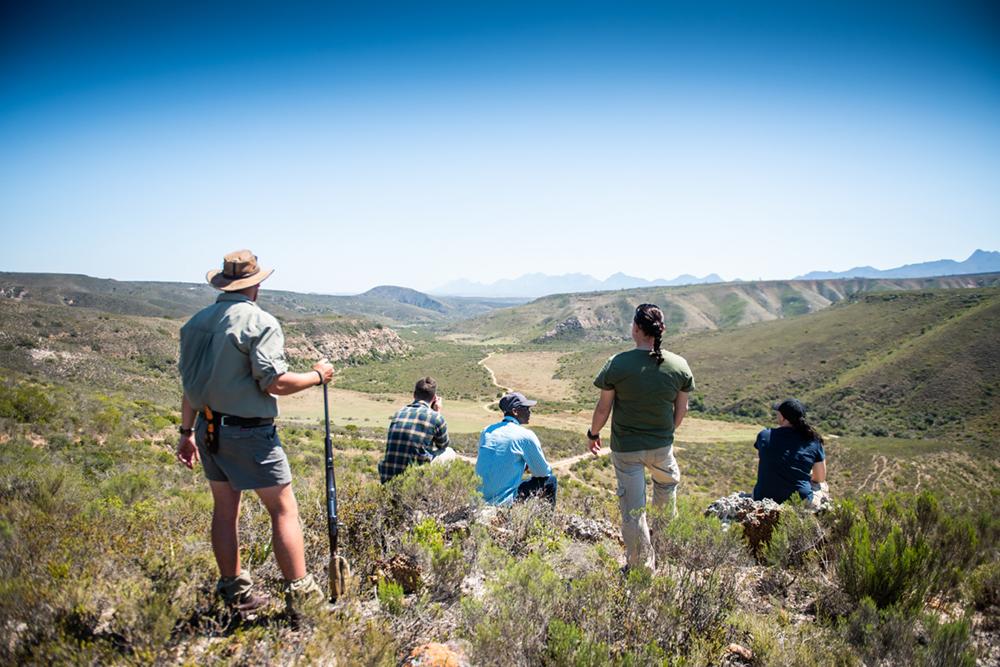 Südafrika Western Cape George Gondwana Game Reserve Pioneer Trail Wanderung Iwanowskis Reisen - afrika.de