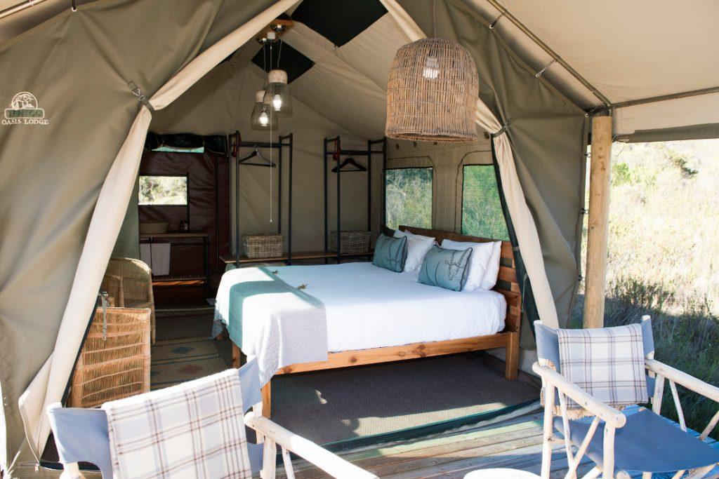 Südafrika Western Cape George Gondwana Game Reserve Pioneer Trail Wanderung Zeltunterkunft Iwanowskis Reisen - afrika.de