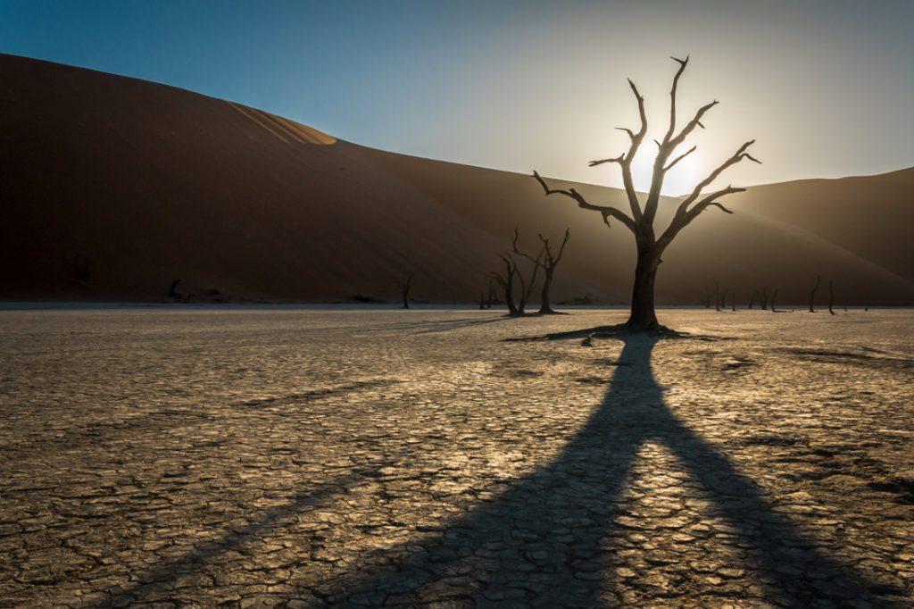 Namibia Sossusvlei Deadvlei Iwanowskis Reisen - afrika.de