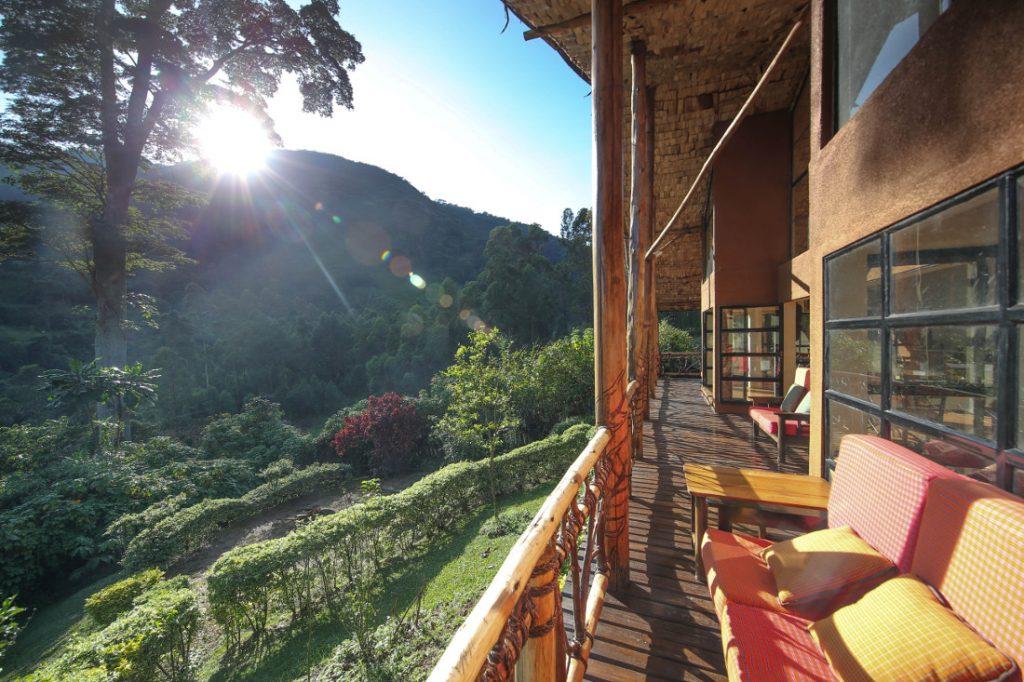 Uganda Bwindi Impenetrable National Park Mahogany Springs Lodge Iwanowskis Reisen - afrika.de