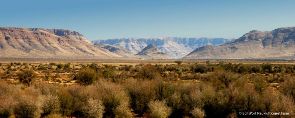 Namibia Naukluft BüllsPort Bullshead Iwanowskis Reisen - afrika.de