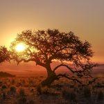 Namibia Tirasberge Ranch Koiimasis Sonnenuntergang Iwanowskis Reisen - Afrika.de