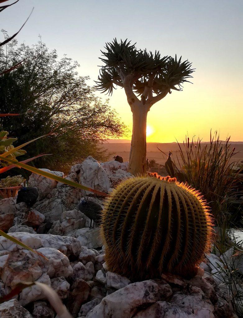 Namibia Khomas Hochland Rostock Ritz Garten Sonnenuntergang Iwanowskis Reisen - afrika.de
