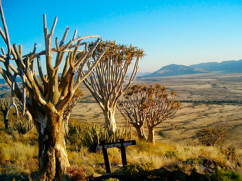 Namibia Namib Naukluft Park Tsauchab River Camp Walking Trails Iwanowskis Reisen - afrika.de