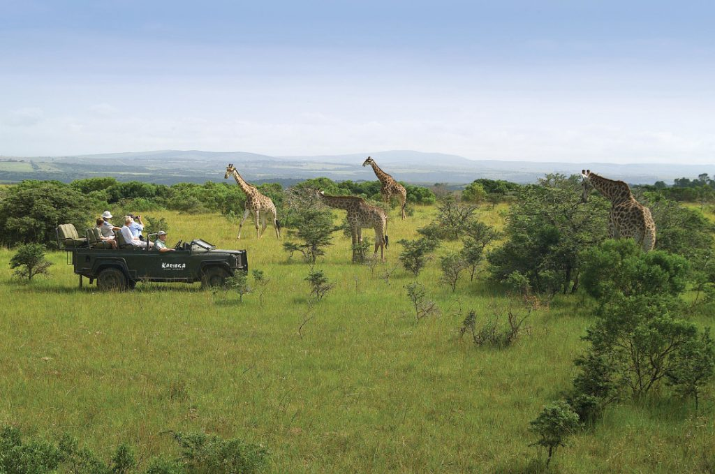 Südafrika Kariega Game Reserve Ukhozi Lodge Pirschfahrt Iwanwoskis Reisen - afrika.de