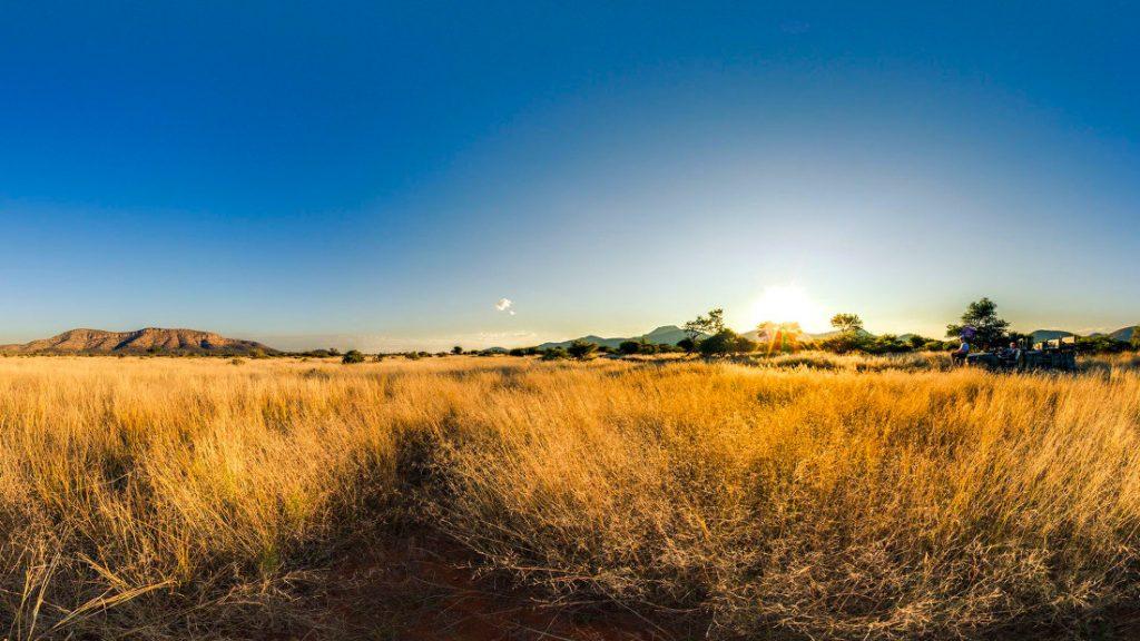 Namibia Otavi Gabus Game Ranch Pirschfahrt Iwanwoskis Reisen - afrika.de