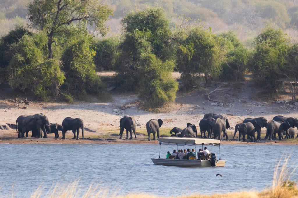Namibia Caprivi Serondela Lodge Bootsfahrt Iwanowskis Reisen - afrika.de
