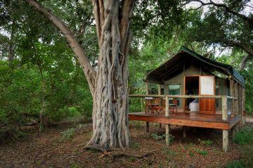Botswana Safaris Lodges Camps