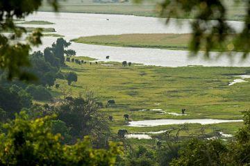 Botswana Flugsafari Chobe Nationalpark Chobe Chilwero Lodge Ausblick - afrika.de