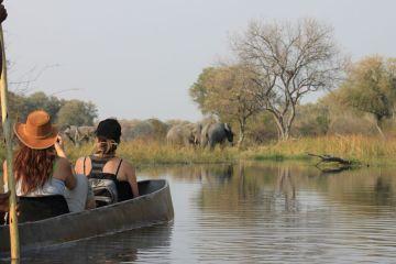 Botswana Safari Reisen