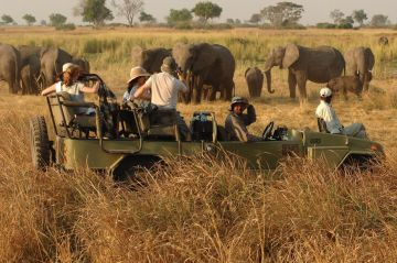 Botswana Reisen Safaris Fly-in