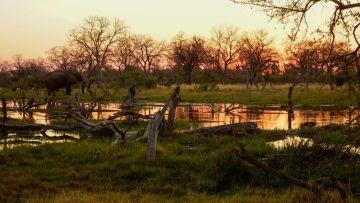 botswana selbstfahrer namibia reisen