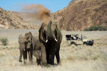 namibia safari unterkünfte