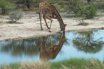 Namibia Etosha Unterkünfte