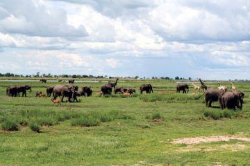 Mietwagenreise Namibia Botswana individuell