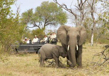 Südafrika Mietwagentour Lodges