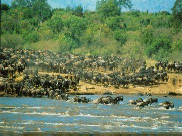 Tansania Premium Lodges