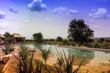 tansania safari reisen luxus
