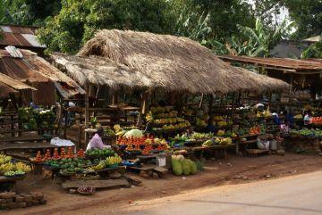 Uganda Obstmarkt Iwanowskis Reisen - afrika.de