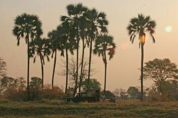 Sambia Kafue Nationalpark Landschaft Iwanowskis Reisen - afrika.de