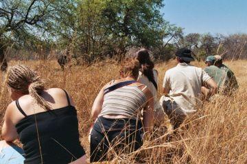 Simbabwe Fußssafari Iwanowskis Reisen - afrika.de