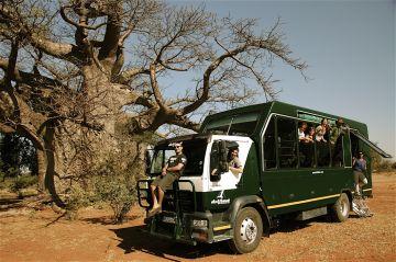 Simbabwe Safaritruck Iwanowskis Reisen - afrika.de