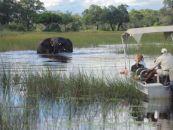 Botswana Reisen Xudum Okavango Delta Lodge Bootsausflug - afrika.de