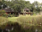 Botswana Safari Xudum Okavango Delta Lodge - afrika.de