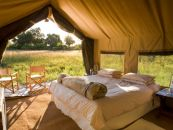 Botswana Chobe Under Canvas Camp im Chobe Nationalpark Zeltunterkunft - afrika.de