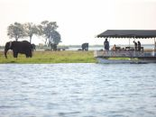 Botswana Chobe Under Canvas Camp im Chobe Nationalpark Bootsauflug - afrika.de