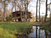 Botswana Okavango Delta Sandibe Safari Lodge - afrika.de