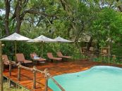 Botswana Reisen Okavango Delta Stanley's Camp Pool - afrika.de