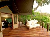 Botswana Safari Okavango Delta Stanley's Camp Safarizelt 2 - afrika.de