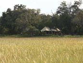 Botswana Safari Xaranna Okavango Delta Camp Aussenansicht - afrika.de
