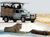 namibia selbstfahrer