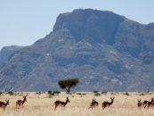 Namtib Desert Lodge Namibia Selbstfahrer
