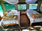 Namibia, Caprivi, Ndhovu Safari Lodge - afrika.de