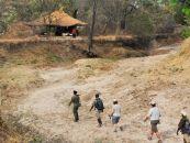 sambia hotels chikoko camp 1 - afrika.de