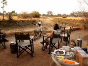 sambia hotels chikoko camp 2 - afrika.de