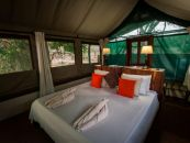 sambia safari camp