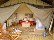 sambia kafure mukambi plains camp safarizelt - afrika.de