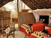 sambia north luangwa mwaleshi camp 3 - afrika.de