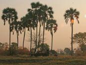 sambia kafue nanzhila plains camp 4 - afrika.de