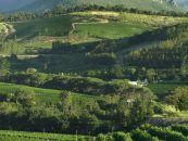L'Avenir Wine Estate Südafrika Reisen