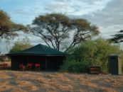 halisi camp
