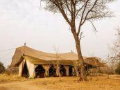 Tansania, Ruaha NP., Kwihala Camp - afrika.de