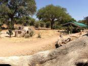Tansania, Ruaha NP., Mdonya Old River - afrika.de